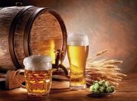 Marcado Cervejeiro: palestra gratuita vai abordar nova tributação, cursos e potenciais do setor