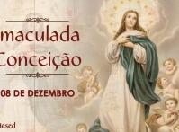 Diocese de Nova Friburgo celebra Imaculada Conceição de Nossa Senhora